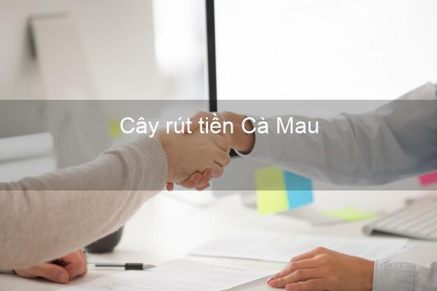 Cây rút tiền Cà Mau