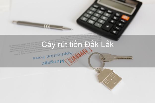 Cây rút tiền Đắk Lắk
