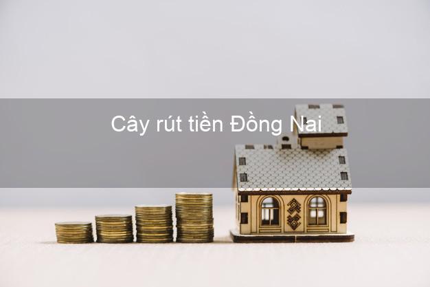 Cây rút tiền Đồng Nai