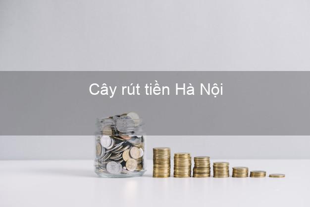 Cây rút tiền Hà Nội