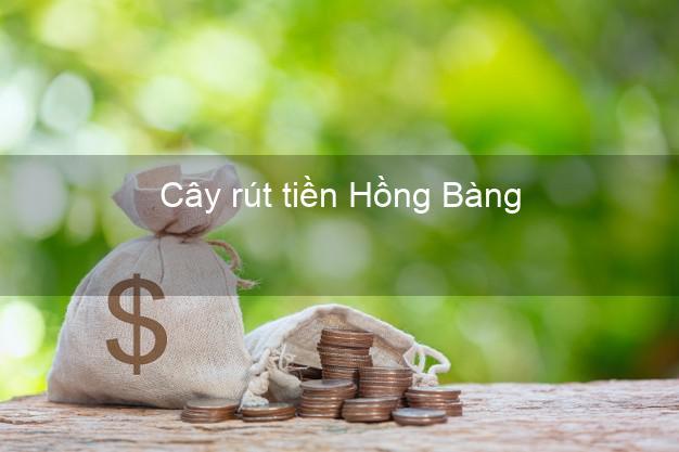 Cây rút tiền Hồng Bàng Hải Phòng