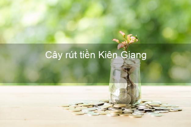 Cây rút tiền Kiên Giang