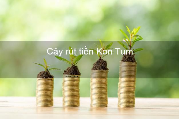 Cây rút tiền Kon Tum