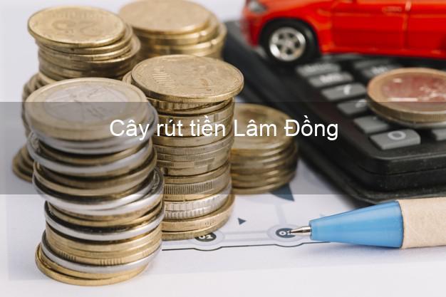 Cây rút tiền Lâm Đồng
