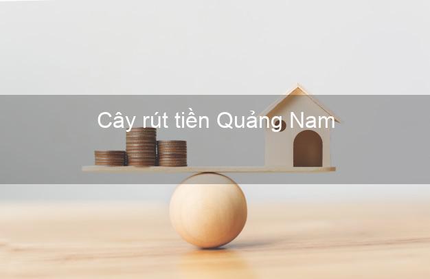 Cây rút tiền Quảng Nam