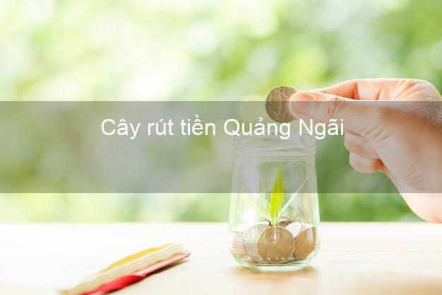 Cây rút tiền Quảng Ngãi