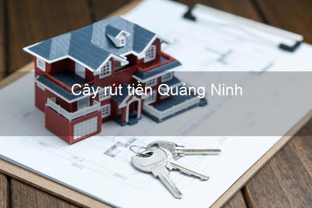 Cây rút tiền Quảng Ninh