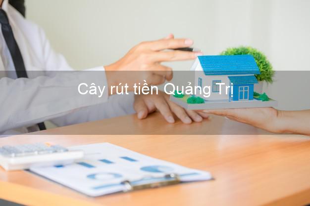 Cây rút tiền Quảng Trị