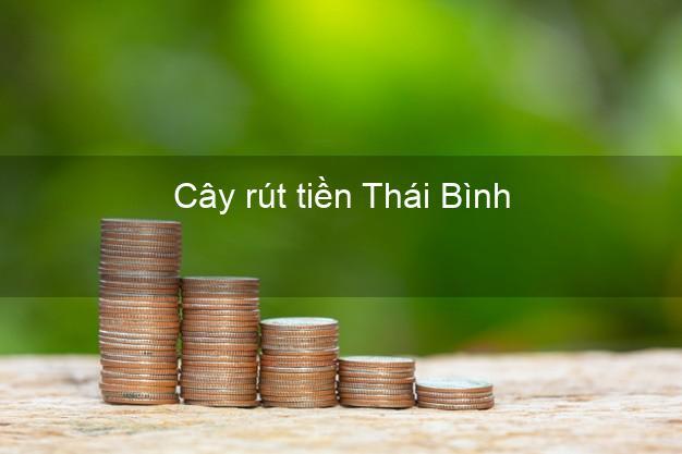 Cây rút tiền Thái Bình