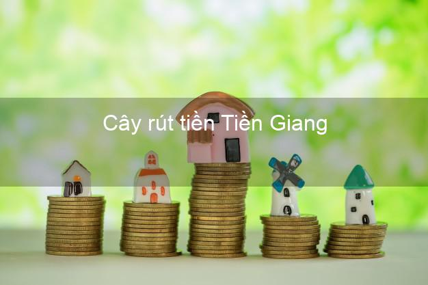 Cây rút tiền Tiền Giang